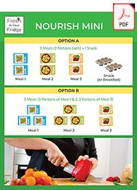 Nourish Mini pdf